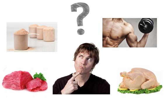 pensando en proteina